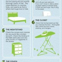 hotel-bed-bugs-infographic-600