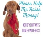 Would you drop your pants for a $1? Help Me Raise Money for a Great Cause!