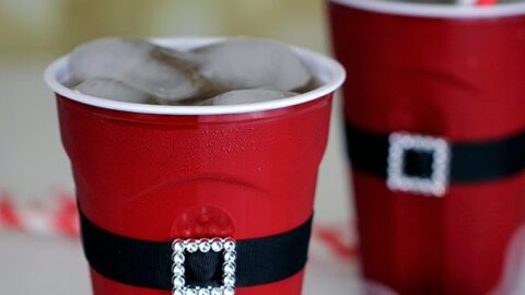8 Clever Holiday Party Ideas using SOLO®