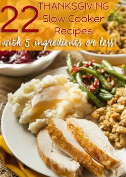 22 Slow Cooker Recipes with 5 Ingredients or Less for Thanksgiving