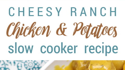 Slow Cooker Cheesy Ranch Chicken