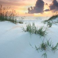 5 Unique Things to do in Gulf County Florida