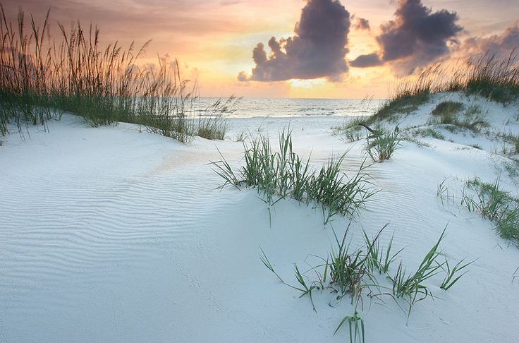 Gulf County Florida