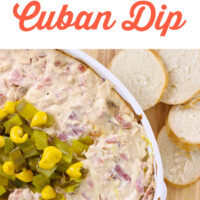 Score a Touchdown with this Tampa Cuban Sandwich Dip