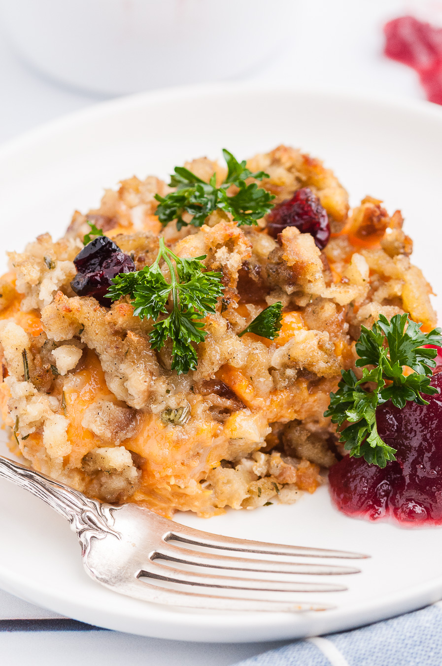 serving of leftovers on plate with garnish and cranberry sauce.