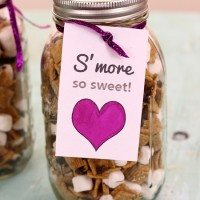 S'more So Sweet DIY Gift (& Way to Help Local Schools)