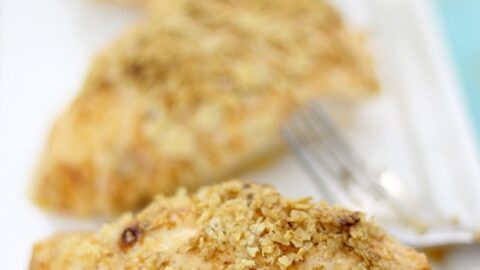 5 Ingredient Chipotle Crusted Chicken