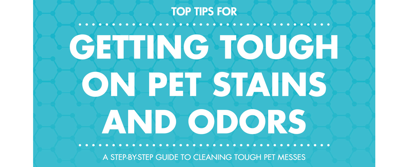 Free Pet Odor & Stain ebook