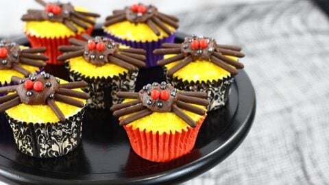 Cute and Spooky Spider Cupcakes