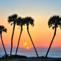 Daytona Beach: A Surprising Holiday Escape