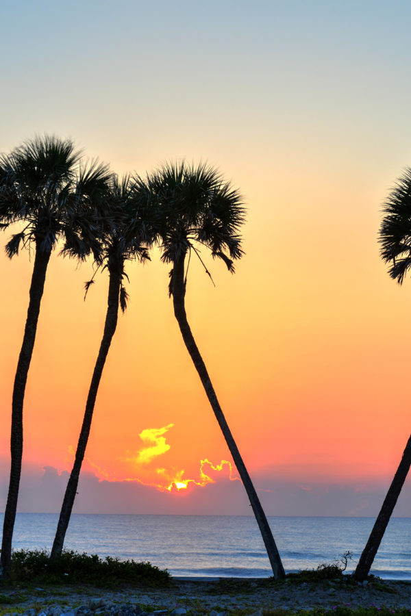 Daytona Beach: A Surprising Holiday Escape