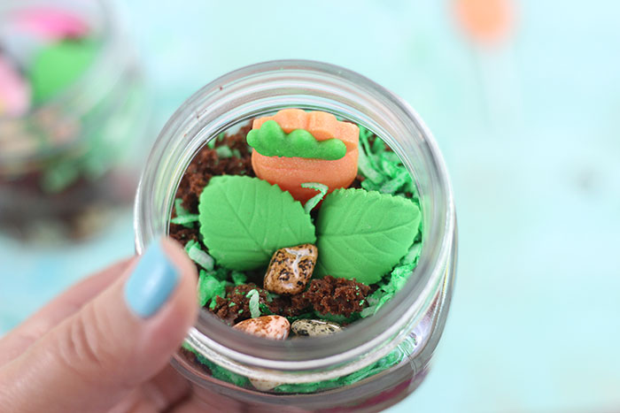 Terrarium Dessert Jars. Fun Treat for Kids to Make.