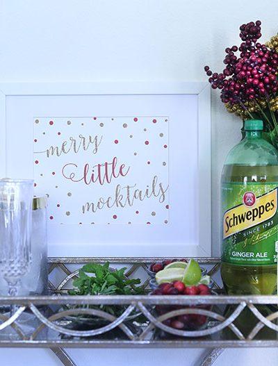 """""""Merry Little Mocktails"""" DIY Mocktail Bar"""