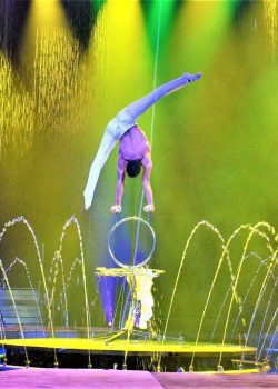 Traveling Water Circus? Get Cirque Italia Tickets!