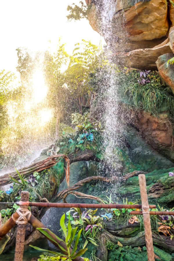 Destination Pandora! How To Visit another World Roundtrip in a Day