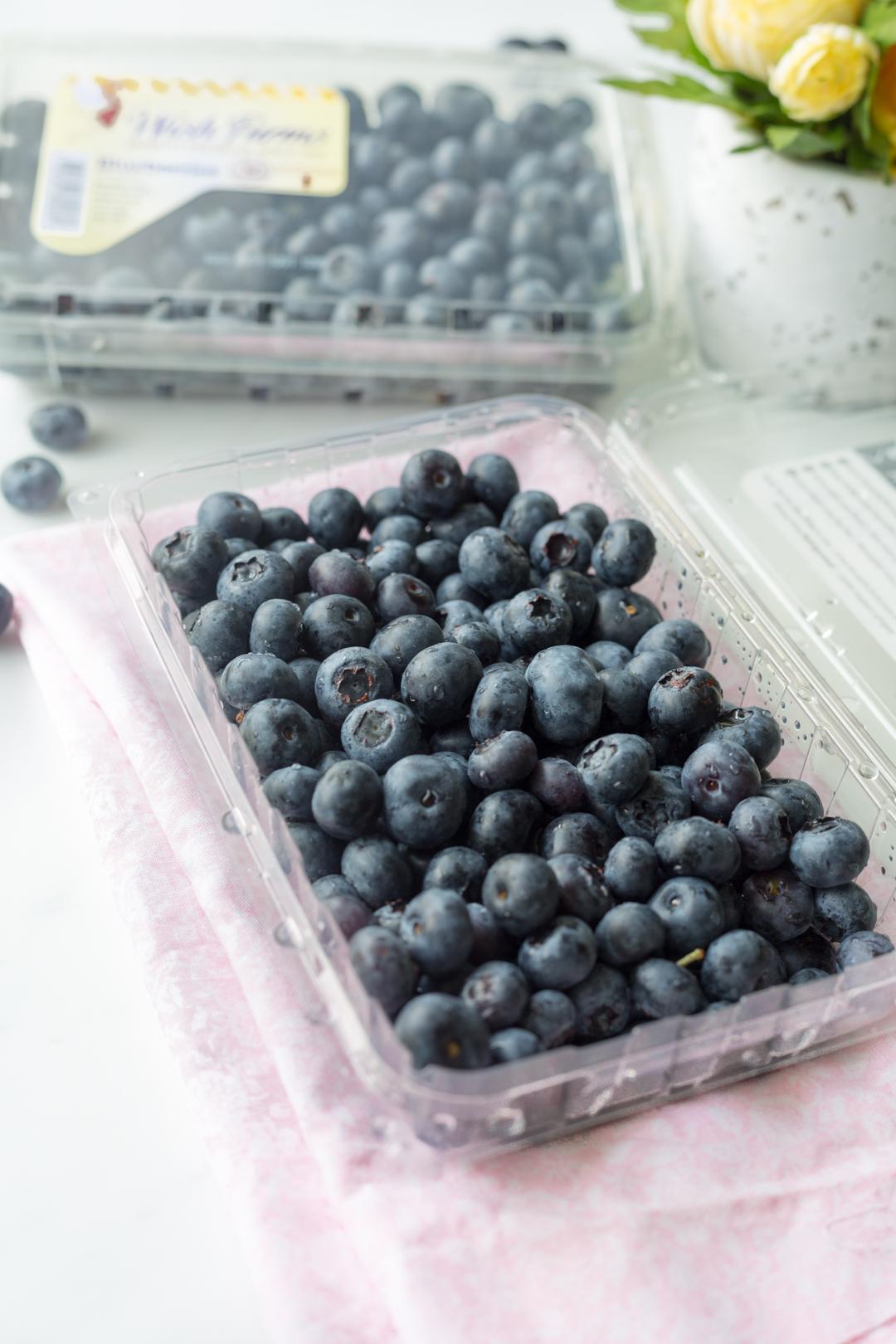 Easy 3 Ingredient Blueberry Dessert