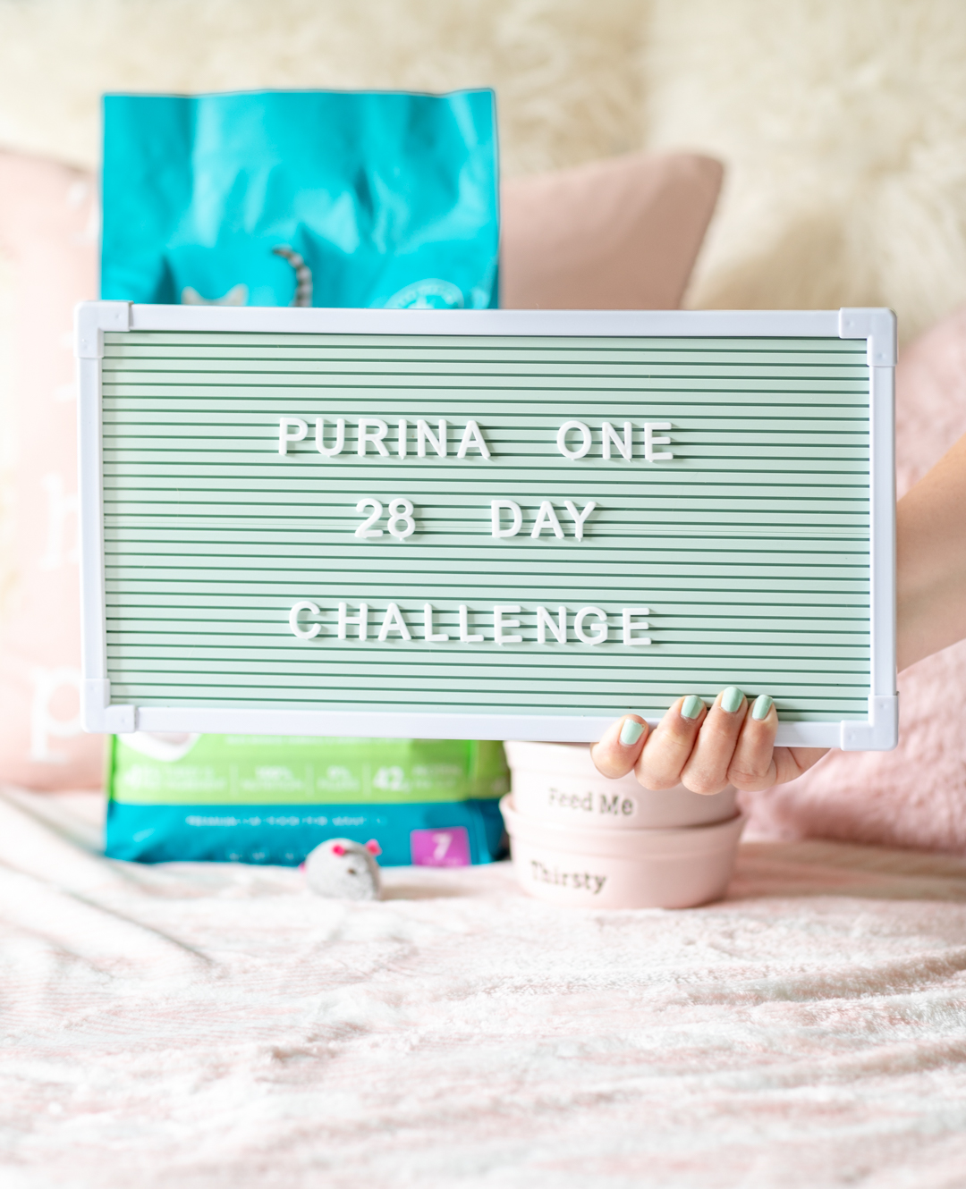 Purina One 28 Day Challenge