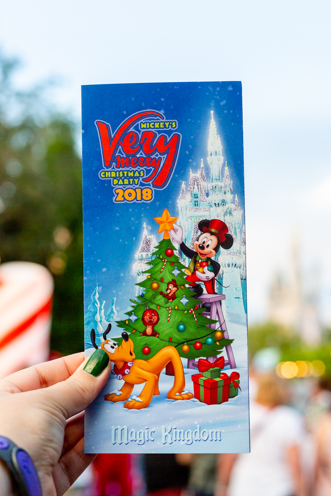 WDW Very Merry Christmas party guide.