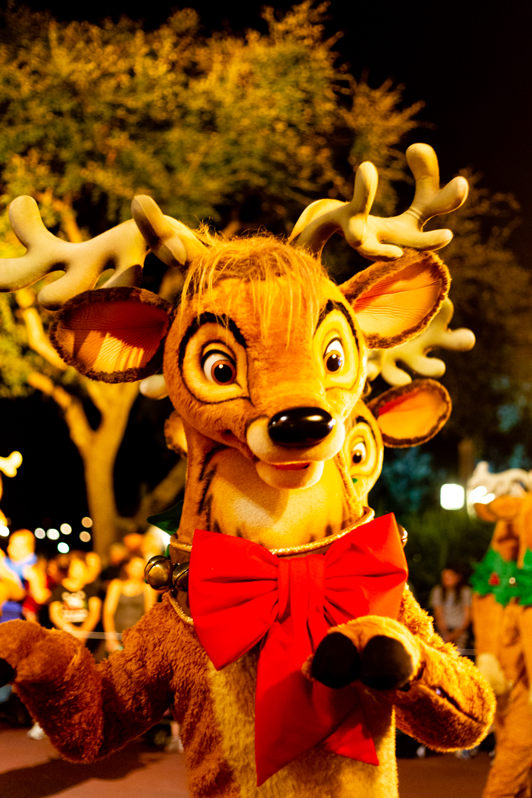 Reindeer in the Very Merry Parade at WDW.