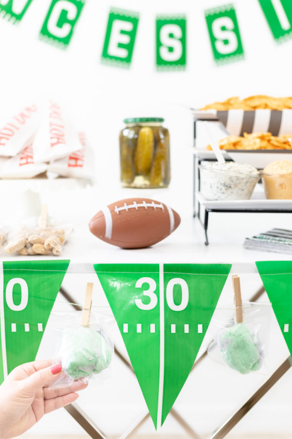 DIY Game Day Concessions