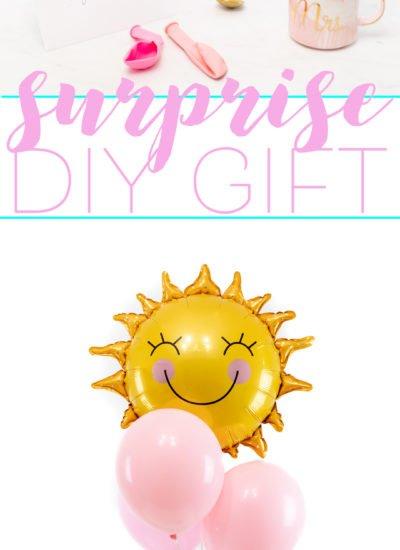 Surprise DIY Gift Idea