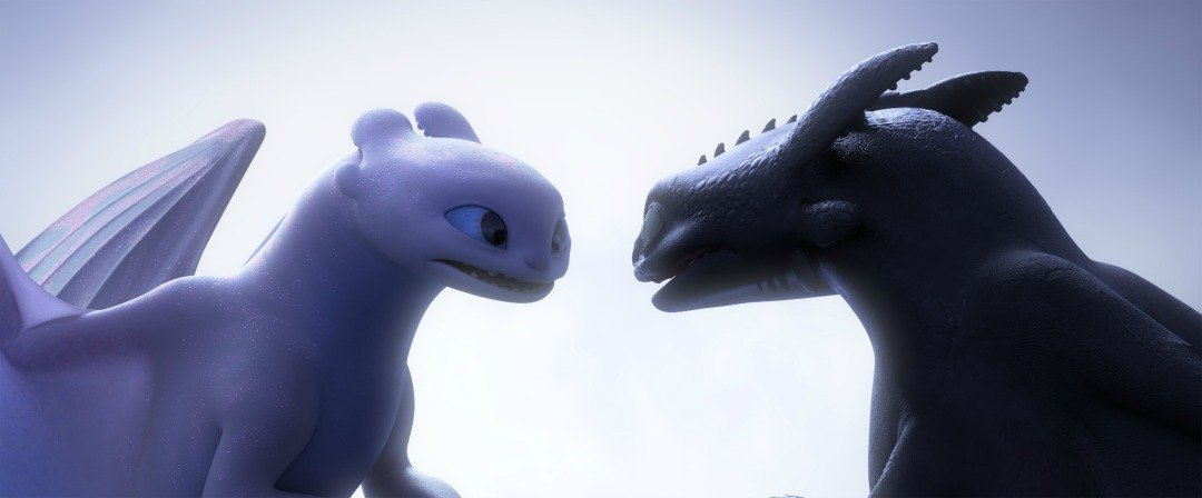 Light Fury and Night Fury from How to Train Your Dragon