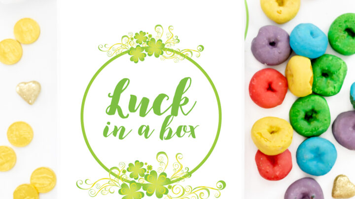 Luck In a Box DIY Gift