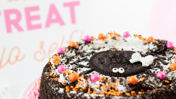 Trick or Treat Yo Self with a Spider Ice Cream Cake