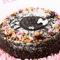 Spider Ice Cream Cake