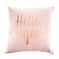 Blush Pink & Gold Hello Gorgeous Pillow