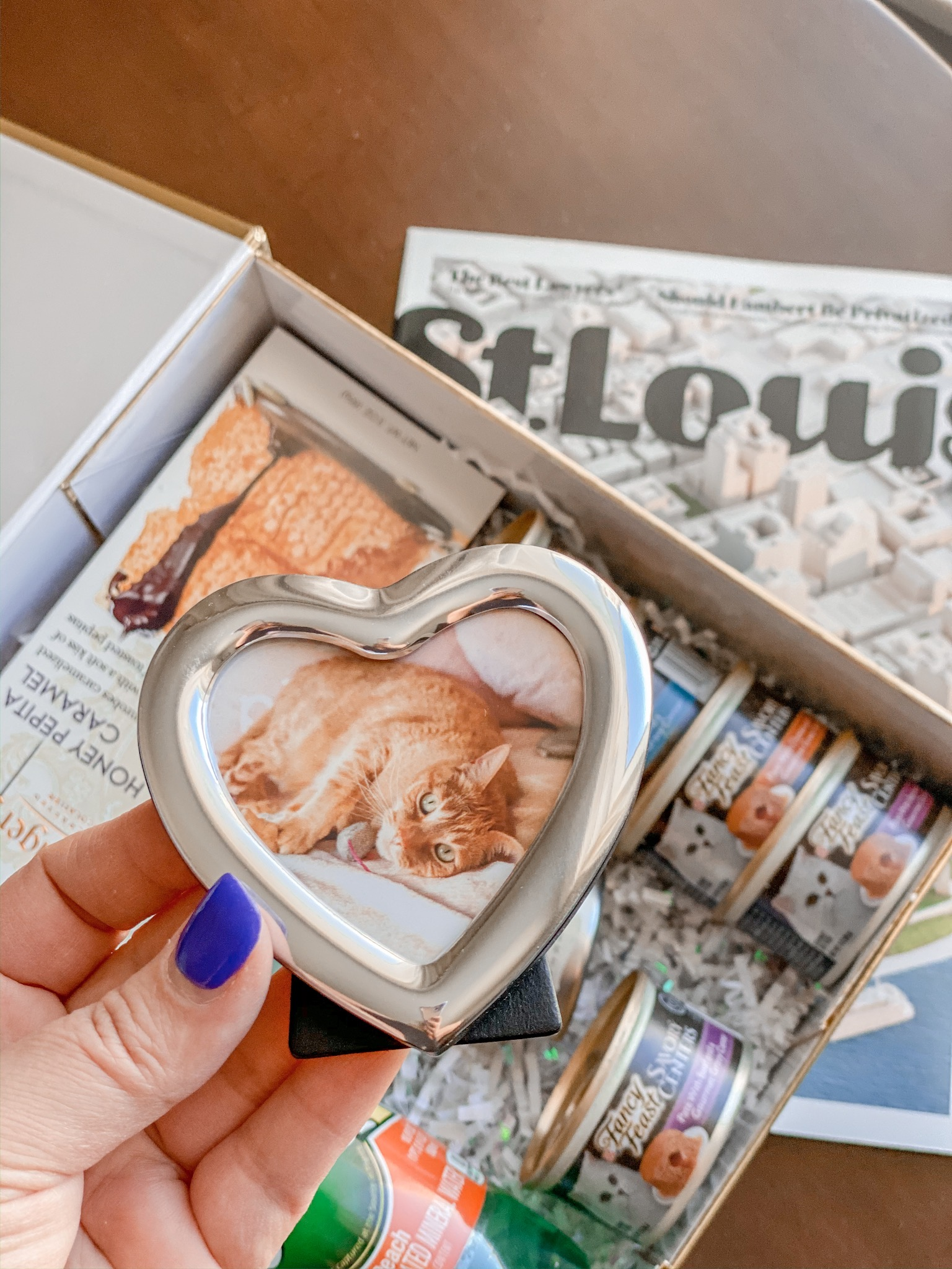 heart shaped frame with cute cat inside