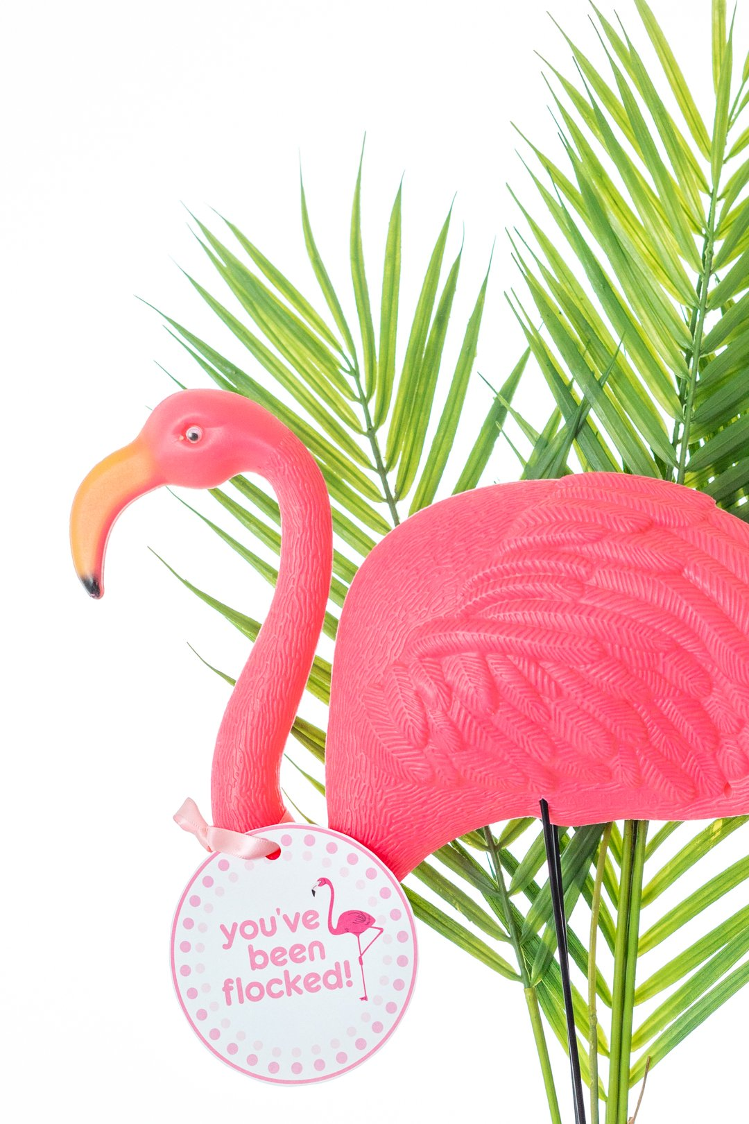 plastic lawn flamingo with you've been flocked gift tag