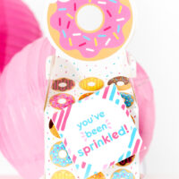 cute little donut gift box