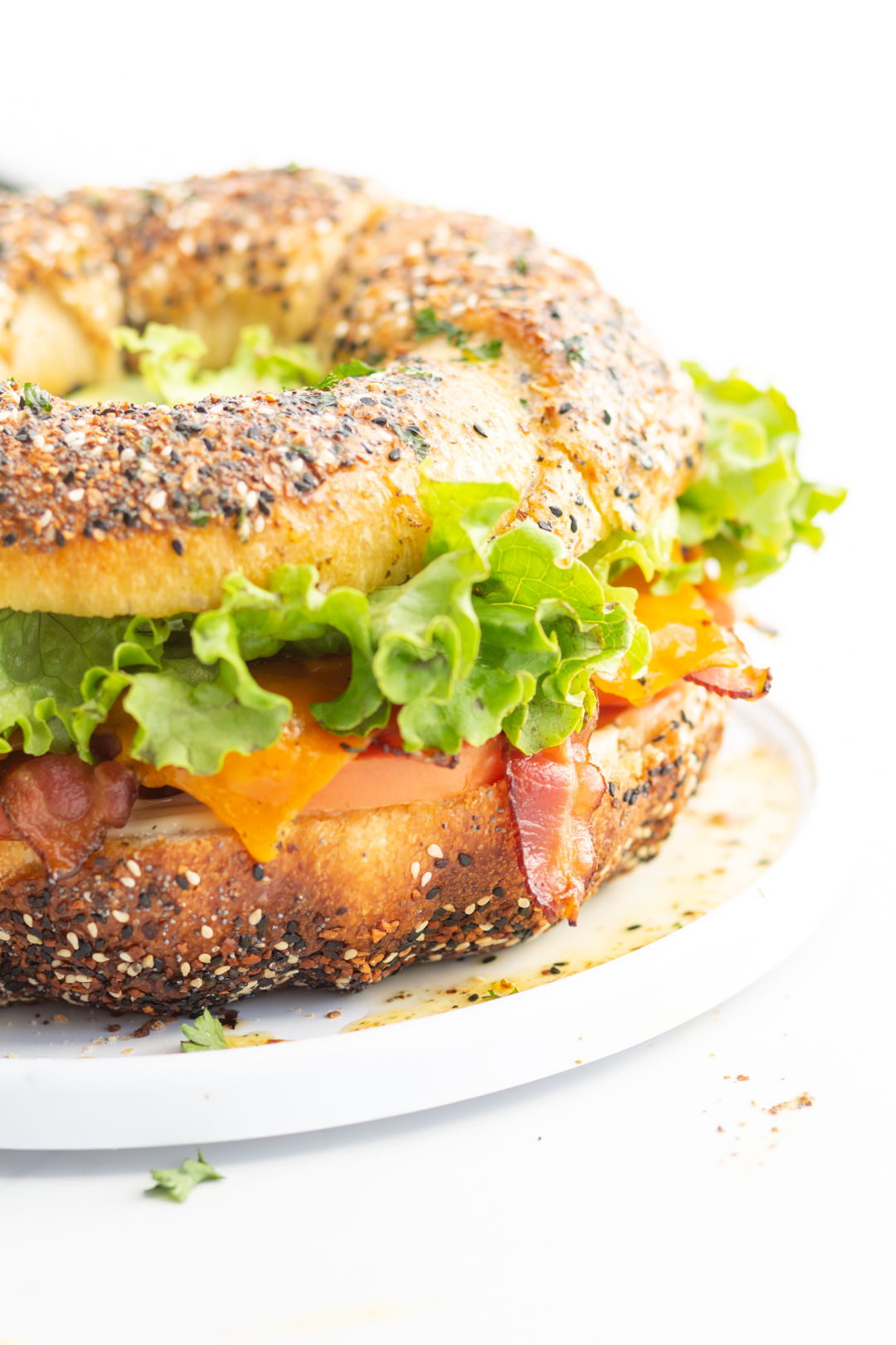 up close of large party sandwich