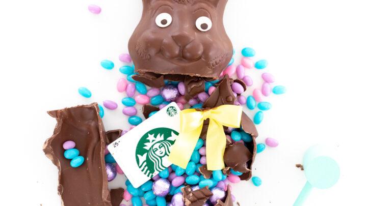 Smashable Chocolate Bunny Gift