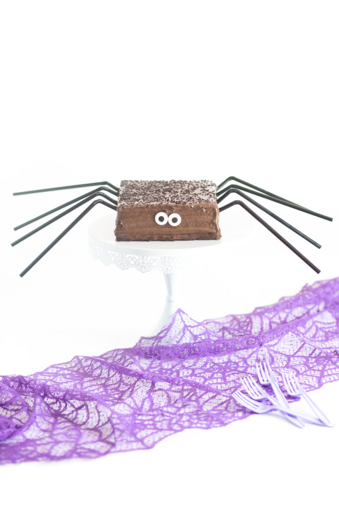 chocolate spider cake cake with big candy eyes and black straws for legs