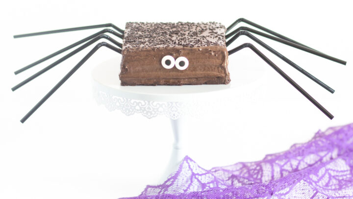 Halloween Spider Cake in 10 Minutes