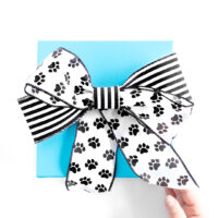 gift box with a cute diy cat paw pattern ribbon.